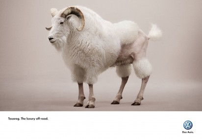 ib_vw_Touareg_Billy-Goat