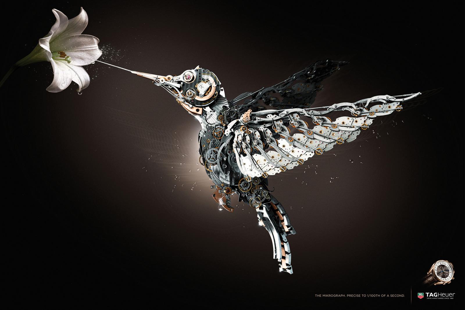 Tag-Heuer-bird-print.jpg