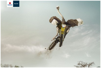 I Believe in Advertising | ONLY SELECTED ADVERTISING | Advertising Blog & Community » Suzuki: Penguin, Ostrich