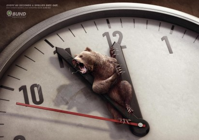 environmental_awareness_brown_bear